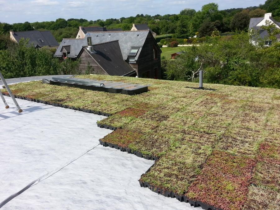 B3 mise en place de la végétalisation extensive sur la toiture pendant travaux