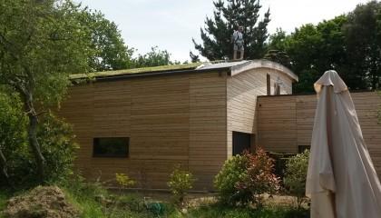 Toiture végétalisée - végétalisation extensive sur la toiture - fin des travaux