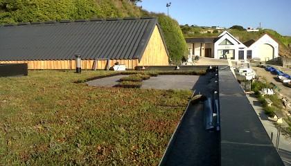 H2 végétalisation toiture plate mise en oeuvre pendant travaux