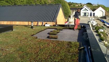 H3 végétalisation toiture plate mise en oeuvre pendant travaux