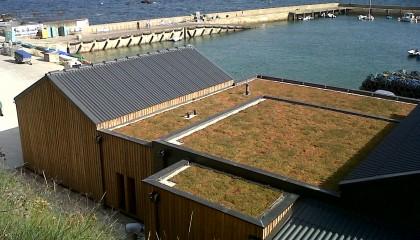 H4 végétalisation toiture plate fin des travaux