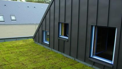 M6 toiture végétalisée extensive fin des travaux